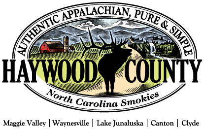 Haywood-logo-w-towns